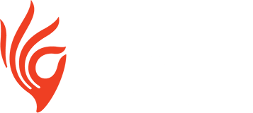 Piramal Critical Care